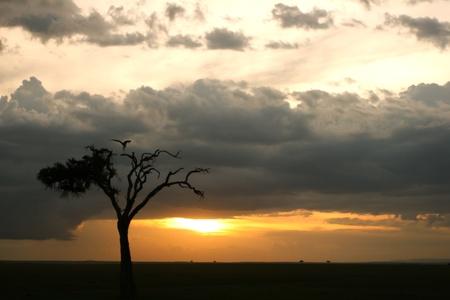 Sunset at Samburu, Kenya Stock Photo - 12813774