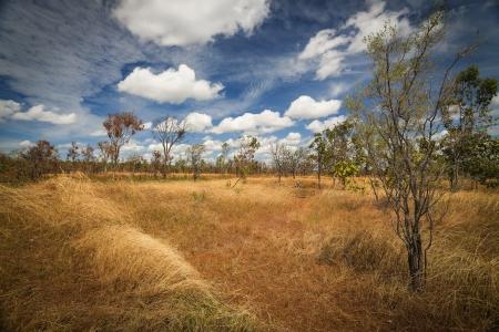 territories: Landscape of Kakadu National Park, Australia