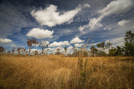 Landscape of Kakadu National Park, Australia Stock Photo - 14041581
