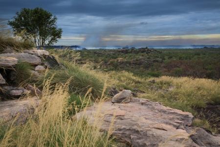 Landscape of Kakadu National Park with bush fire in the background, Australia Stock Photo - 14041575
