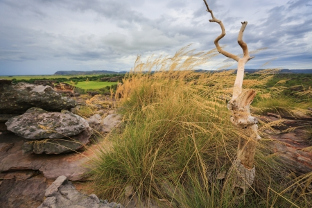 kakadu: Landscape of Kakadu National Park, Australia