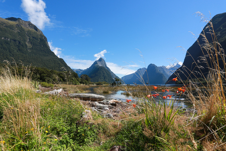 Mitre Peak rising from the Milford Sound fiord and reflecting in water. Fiordland national park, New Zealand
