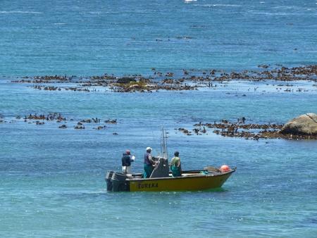 fischerei: Seefischerei Patrouillenboot Lizenzfreie Bilder