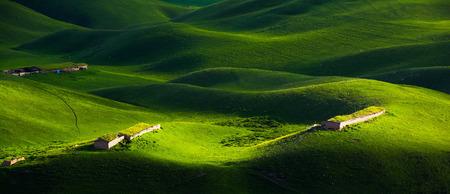 Grassland scenery of Xinjiang