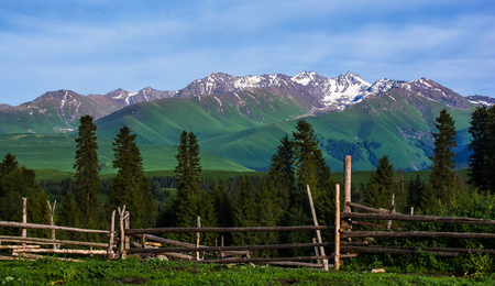 Xinjiang grassland scenery