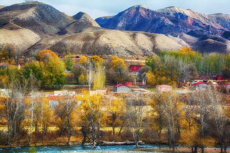 Scenario autunnale dello Xinjiang Archivio Fotografico - 83472417