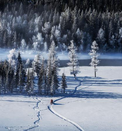 Xinjiang Kanas snow scene