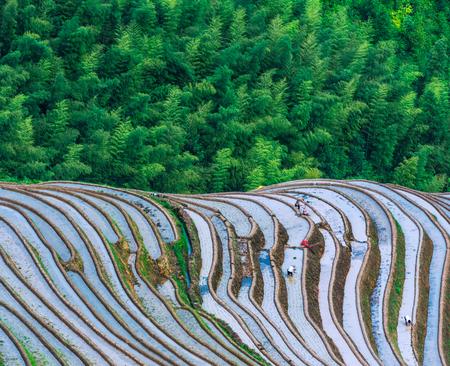 Guangxi Longji Terraced Scenery Imagens