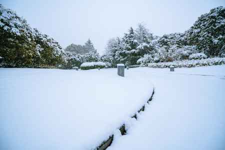 Landscape view of a snow land Stock Photo