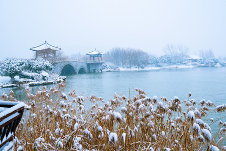 Luoma Lake landscape view during winter