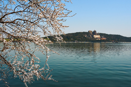The Summer Palace is full of peach blossoms