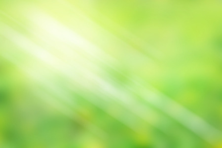 soft background: Photo of abstract bright and light green color blur background