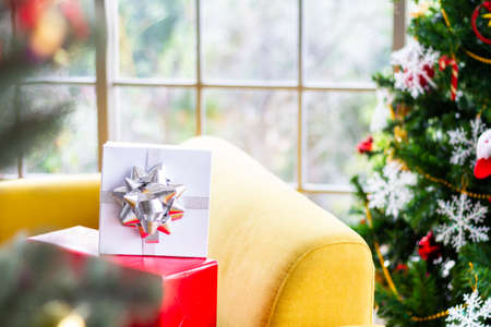 Room decorated with Christmas trees and a gift box with a ribbon Ideas to welcome the upcoming Christmas season. Archivio Fotografico