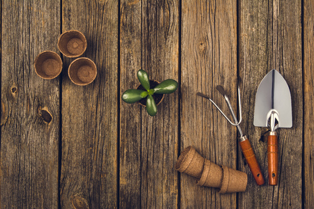 transplantation: Preparing for a seasonal transplantation of plant or flower, in a gardening, vintage shed near house. Product still life image as lay flat or top view. Planting in the garden concept photograph. Stock Photo