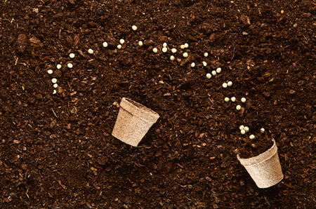 fertile: Fertile soil texture background seen from above, top view. Gardening or planting concept. Stock Photo