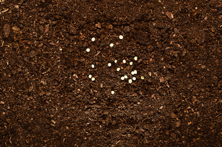 turf pile: Fertile soil texture background seen from above, top view. Gardening or planting concept. Stock Photo