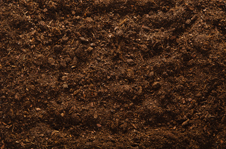 humus: Fertile soil texture background seen from above, top view. Gardening or planting concept. Isolated on white Stock Photo