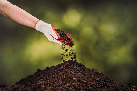 replanting: Hand pouring black soil on green bokeh background. Planting a small plant on a pile of soil or pouring soil during funeral. Gardening backdrop for advertising.
