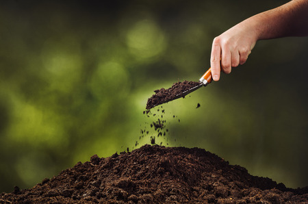 fertile: Hand pouring black soil with shovel on green bokeh background. Planting a small plant on a pile of soil or pouring soil during funeral. Gardening backdrop for advertising.