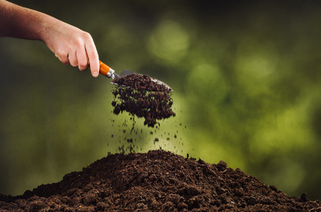 Hand, die schwarzen Boden mit Schaufel auf grünem bokeh Hintergrund gießt. Pflanzen einer kleinen Pflanze auf einem Haufen Erde oder Gießen Erde während der Beerdigung. Garten-Kulisse für die Werbung. Standard-Bild - 71098415