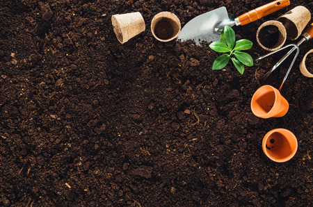 turf pile: Gardening tools on fertile soil texture background seen from above, top view. Gardening or planting concept. Working in the spring garden. Stock Photo