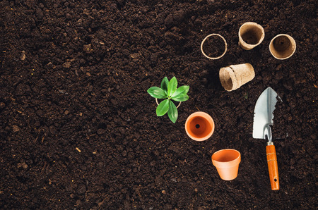 Gardening tools on fertile soil texture background seen from above, top view. Gardening or planting concept. Working in the spring garden. Banco de Imagens