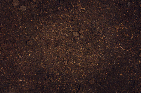 turf pile: Fertile soil texture background seen from above, top view. Gardening or planting concept with copy space. Natural pattern
