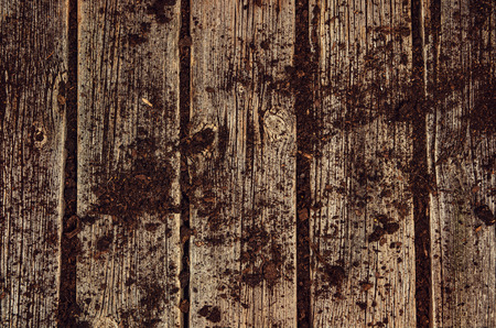 visible: Vintage old wooden planks covered in soil. Gardening background top view with visible texture. Stock Photo