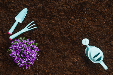 Gardening tools on fertile soil texture background seen from above, top view. Gardening or planting concept. Working in the spring garden. Banque d'images