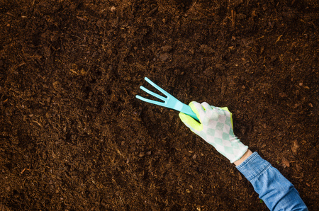 Woman hand planting a plant on a natural, soil backgroud. Camera from above, top view. Natural background for advertisements. 写真素材