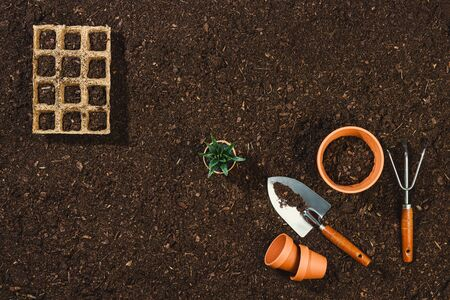 Gardening tools on fertile soil texture background seen from above, top view. Flat lay gardening or planting concept. Working in the spring garden.