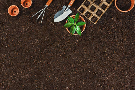 Gardening tools on fertile soil texture background seen from above, top view. Gardening or planting concept. Working in the spring garden. Flat lay mockup with border composition