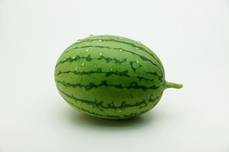 carbuncle: watermelon - Spring carbuncle