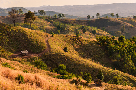 dry brush: A landscape shot of rolling hills and dry brush on a trail in Thailand