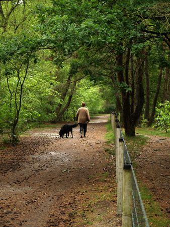 timberland: Woman walking her dog