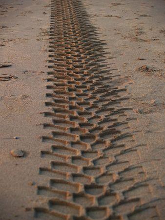 Tracks in het zand Stockfoto