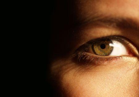 parpados: Baja clave imagen de un hermoso ojo verde
