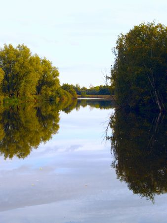 Landscape with reflecting trees in the water Stock Photo - 2413441