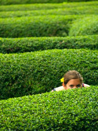 A girl with a flower in her hair, hiding in a maze Stock Photo