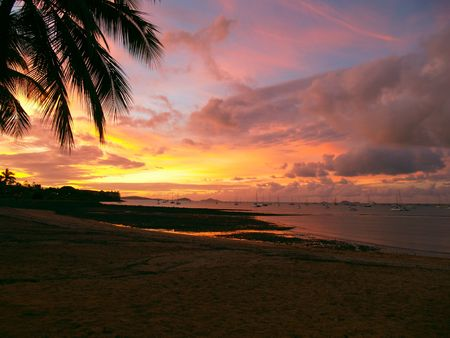 airlie: Beautiful sunset with a palmtree silhouette and sailboats at Airlie Beach, Queensland, Australia Stock Photo