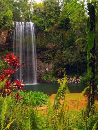 The Millaa Millaa falls in Queensland Australia