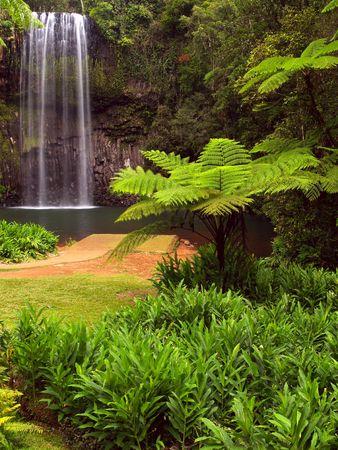De Millaa Millaa valt in Queensland Australië