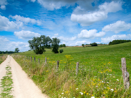 dirtroad: Beautiful French rural landscape in the summer with a dirtroad and wild flowers