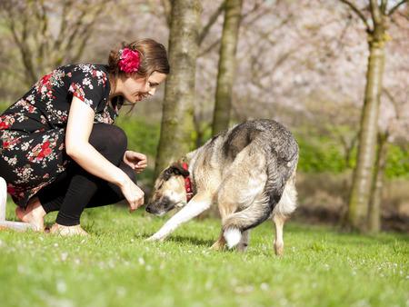 Mooi meisje met een picknick in het voorjaar met haar hond met bloeiende bomen op de achtergrond