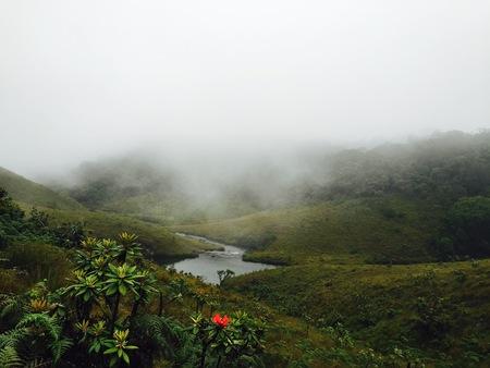 plains: horton plains national park scenery