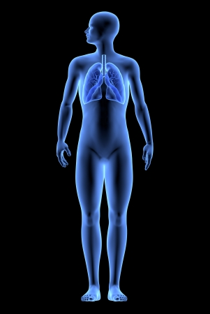 The Human Body - Lungs  X-Ray effect