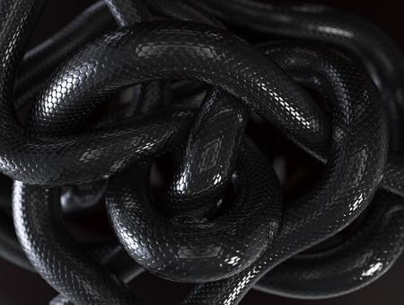 Nero Snakes Abstract Background Archivio Fotografico - 29873103