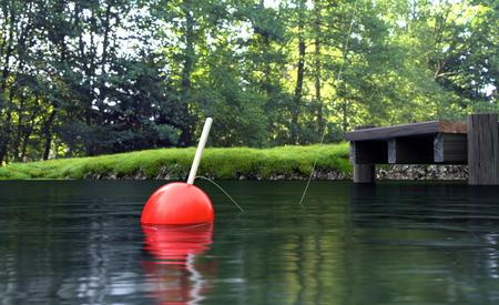 钓鱼场景夏日背景