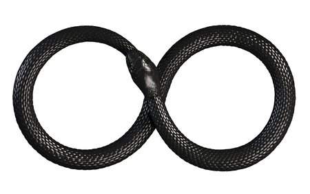 Serpent mangeant sa propre queue. Symbole infini Banque d'images