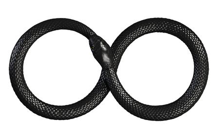 Serpiente comiendo su propia cola. Símbolo Infinito Foto de archivo - 87392280